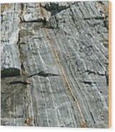 Granite With Quartz Inclusions Wood Print