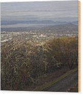 Grants Pass From The Hill Top Wood Print