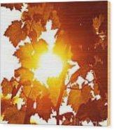 Grape Leaves Background Wood Print