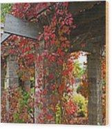 Grape Leaves On Columns Wood Print