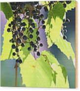 Grapes And Leaves Wood Print