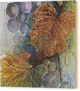 Grapes Iv Wood Print by Judy Dodds