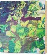 Grapevines Toledo Botanical Gardens Wood Print