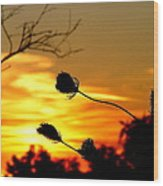 Grasping The Sunset Wood Print