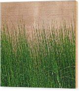 Grass And Stucco Wood Print
