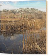 Grass Swamp And Snow Wood Print