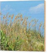 Grass Waving In The Breeze Wood Print