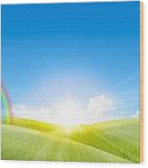 Grassland In The Sunny Day With Rainbow Wood Print