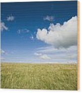 Grassy Field On Hill With Blue Skies Wood Print