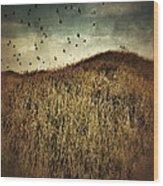 Grassy Hill Birds In Flight Wood Print