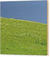 Grassy Slope View Wood Print