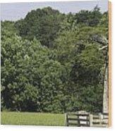 Grave Of Lafayette Meeks Appomattox Virginia Wood Print
