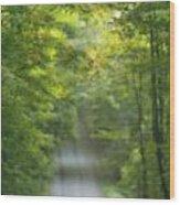 Gravel Road, Niagara Region, Pelham Wood Print