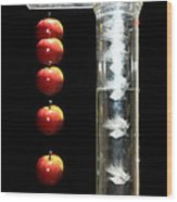 Gravity Comparison Wood Print