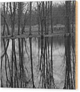 Gray Day Reflections Wood Print