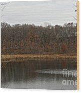 Gray Lake Wood Print