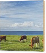 Grazing Cows Wood Print