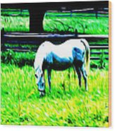 Grazing Horse Wood Print by Bill Cannon