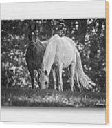 Grazing In Black And White Wood Print