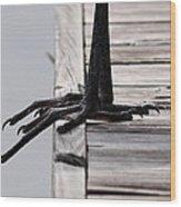 Great Blue Heron - Foundation Wood Print
