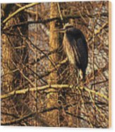 Great Blue Heron At Dusk Wood Print