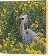 Great Blue Heron In The Flowers Wood Print