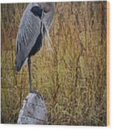 Great Blue Heron On Spool Wood Print by Debra and Dave Vanderlaan