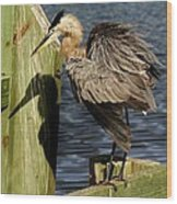 Great Blue Heron On The Block Wood Print