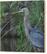 Great Blue Heron Painterly Wood Print