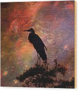 Great Blue Heron Viewing The Cosmos Wood Print