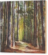 Great Brook Farm Summer Path Wood Print