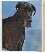 Great Dane 740 Wood Print