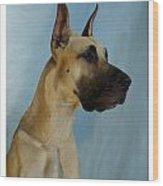 Great Dane 750 Wood Print
