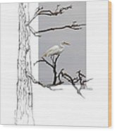 Great Egret - Gnarled Tree Wood Print