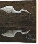 Great Egret Reflection 2 Wood Print
