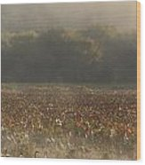 Great Meadows National Wildlife Refuge Blue Heron Fog Wood Print