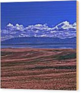 Great Salt Lake And Antelope Island Wood Print