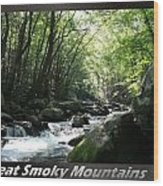 Great Smoky Mountains National Park 10 Wood Print