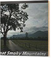 Great Smoky Mountains National Park 3 Wood Print
