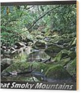 Great Smoky Mountains National Park 5 Wood Print