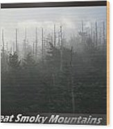 Great Smoky Mountains National Park 8 Wood Print
