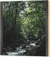 Great Smoky Mountains Np 007 Wood Print
