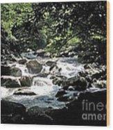 Great Stream Great Smokeys Wood Print by Don F  Bradford