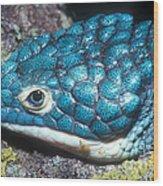 Green Arboreal Alligator Lizard Wood Print