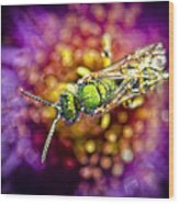 Green Bee Wood Print
