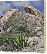 Green Desert With Large Bolders Wood Print