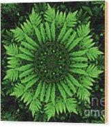 Green Forest Ferns Mandala - 2 Wood Print