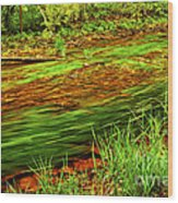 Green Forest River Wood Print