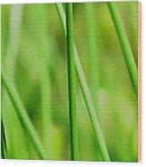 Green Green Grass Of Home Wood Print