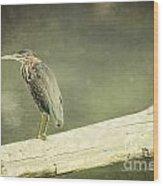 Green Heron On A Log Wood Print